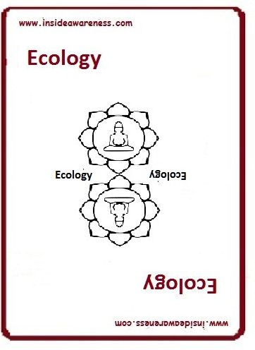 getting InTouch - Value - Ecology