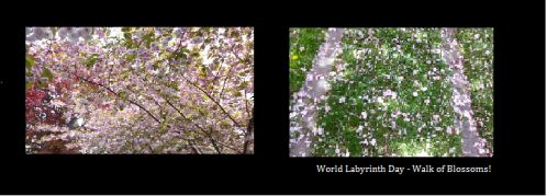 Walking of Blossom, World Labyrinth Day ~ Victoria
