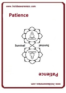 getting InTouch - Value - Patience