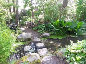 Finnerty Gardens 008