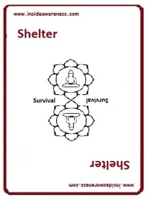 getting InTouch - Value - Shelter