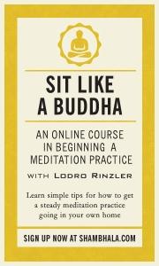 Sit Like a Buddha Link