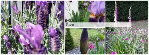 BeFunky Collage - Fire