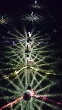 Labyrinth @ Night
