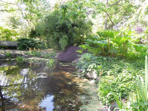 finnerty-gardens-029