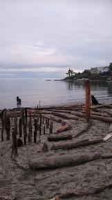#yyj Gonzales Beach