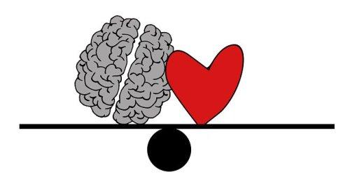 brain-2146157__340