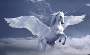 horse-3395135__340