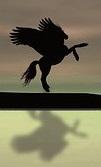 Pegasus Consciousness Infusion