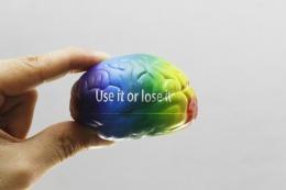 brain-4571119_960_720
